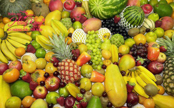 Mùa hè là mùa có nhiều loại hoa quả nhất trong năm