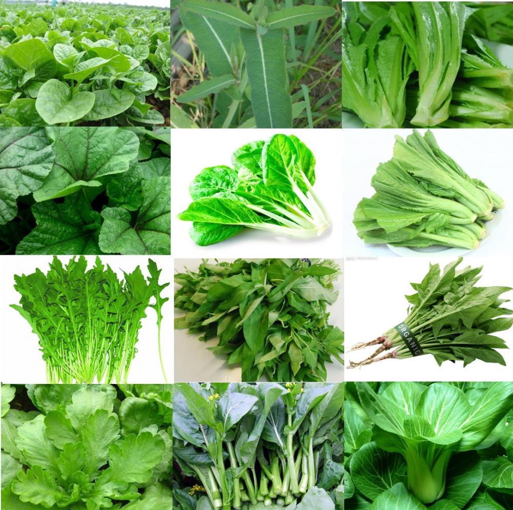 Rau lá xanh - món ăn chống lão hóa da