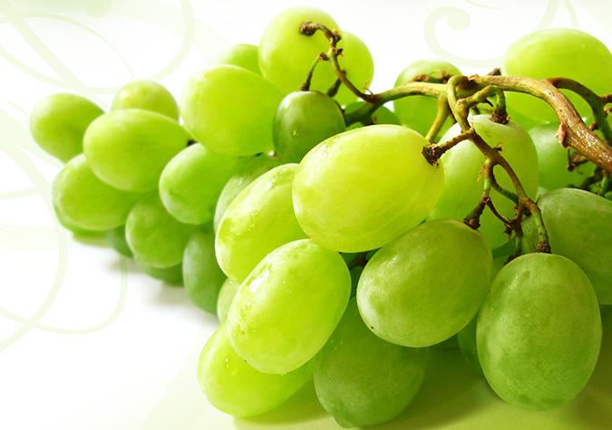 Các dưỡng chất trong quả nho có khả năng kích thích tăng sinh collagen