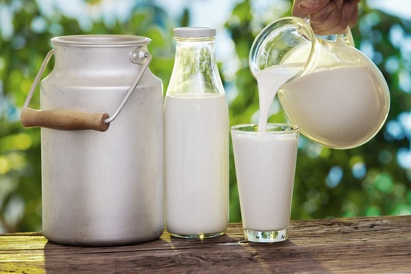 Sữa tươi có chứa nhiều protein, axit lactic giúp cung cấp độ ẩm cho da