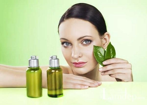 Tinh dầu trà xanh có khả năng chống khuẩn, kháng viêm và làm liền sẹo