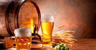 4 cách trị mụn cho dân văn phòng siêu hiệu quả bằng bia