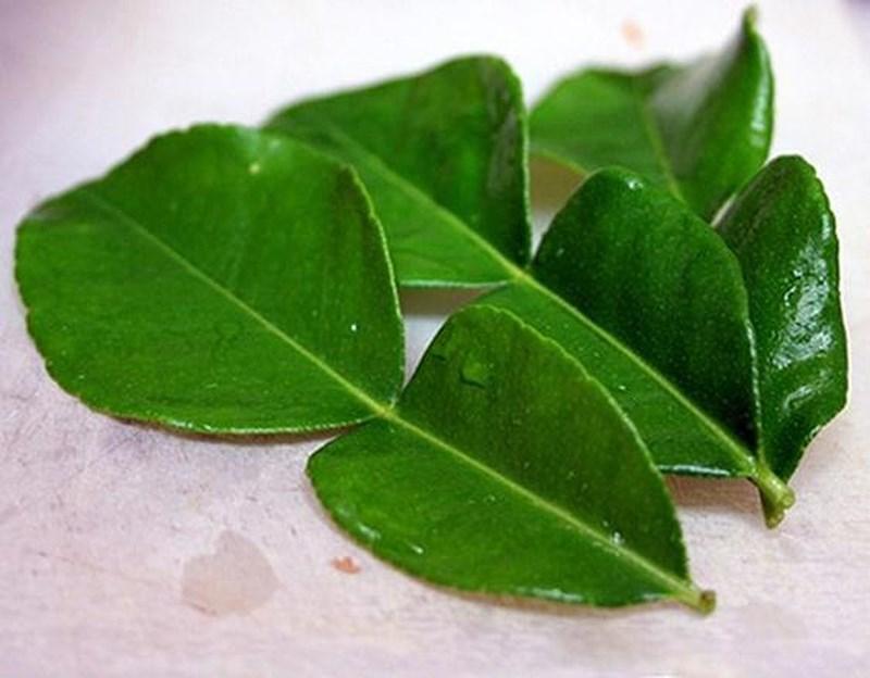 Lá chanh có tính chống viêm, kháng khuẩn cao, từ đó có thể ngăn chặn và tiêu diệt dứt điểm tình trạng mụn