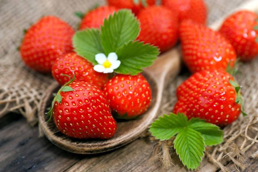 Trong quả dâu tây có chứa nhiều muối khoáng quý, hàm lượng vitamin C, E dồi dào