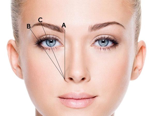 Lông mày lá liễu là một trong các kiểu lông mày đẹp và phù hợp cho gương mặt tròn