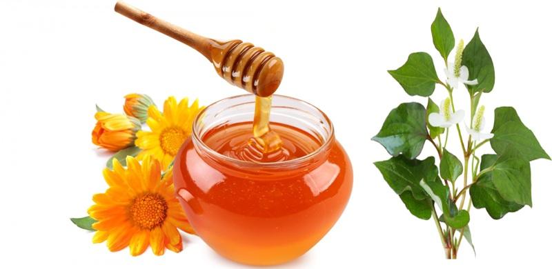 Rau diếp cá và mật ong vừa giúp sạch mụn vừa dưỡng da