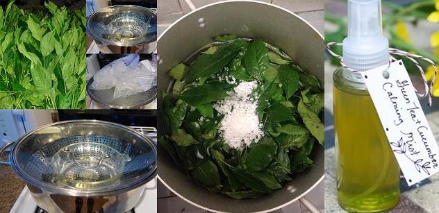 Tự làm toner trà xanh trị mụn trứng cá hiệu quả