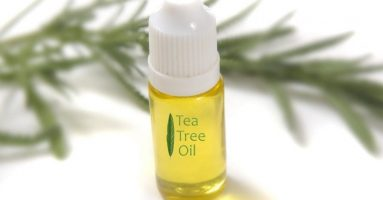 Bí quyết trị mụn hiệu quả từ tinh dầu tràm trà, không lo kích ứng da