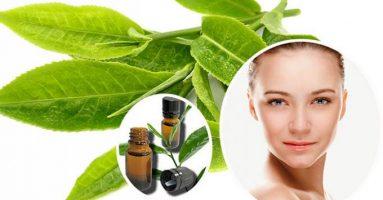 Tinh dầu trà xanh – phương pháp trị mụn hiệu quả nhất