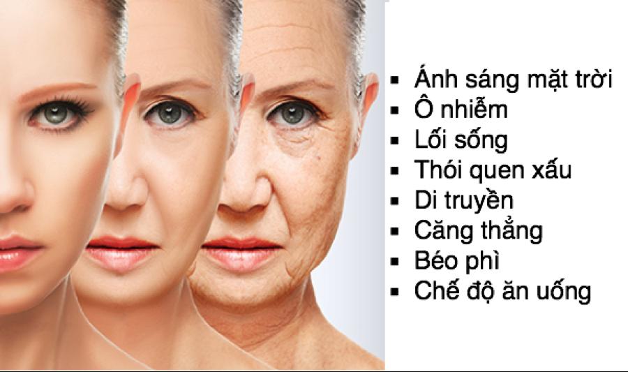 lao-hoa-da-thuong-do-2-nguyen-nhan-chinh-khach-quan-va-chu-quan